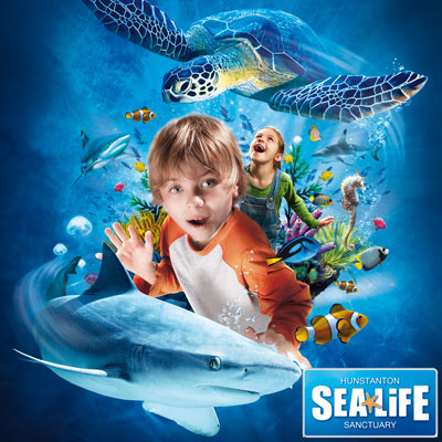 ... to do in Norfolk Zoos, Farms & Wildlife Hunstanton SEA LIFE Sanctuary