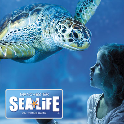 Home Things To Do In London Zoos, Farms & Wildlife SEA LIFE Manchester