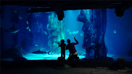 Sea Life London 2for1 Tickets Offers