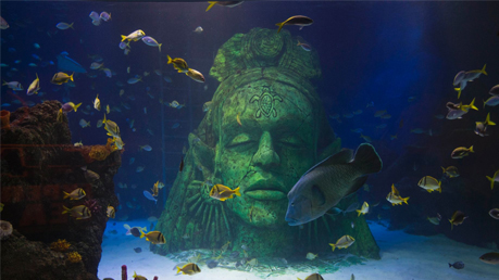 Sea Life Manchester Tickets 2for1 Offers