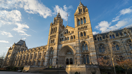 Natural Science And History Museum Manchester