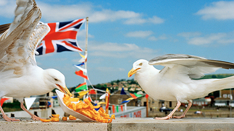 National Maritime Museum - The Great British Seaside: Photography from the 1960s to the present