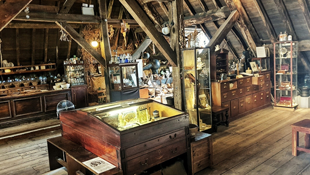 The Old Operating Theatre Museum and Herb Garret